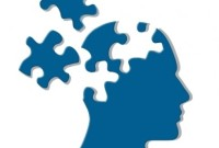 cerebro puzle